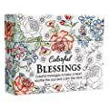 Bundle of Christian Art Gifts Inspirational Biblical Color-In Note Cards