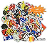 100 PREMIUM Stickers Decals Vinyls | Pack of The Best Selling Cool Sticker | Perfect To Graffiti Your Laptop, Macbook, Skateboard, Luggage, Car, Bumper, Bike, Hard Hat | The Bryta Store