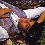 echange, troc Narada Michael Walden - The Nature Of Things
