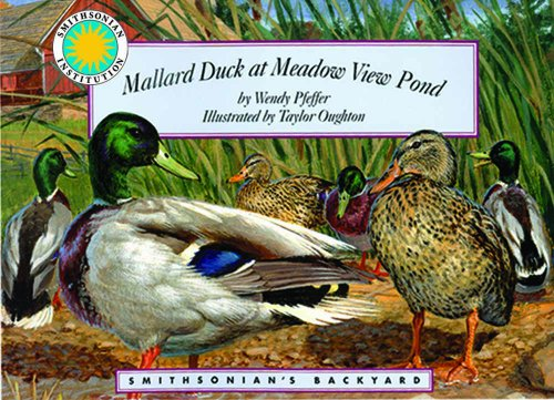 Mallard Duck at Meadow View Pond - a Smithsonian's Backyard Book (Mini book)