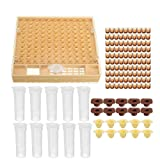 FidgetFidget Cell Cups 100xBrown System Beekeeping Queen Rearing Cupkit Box Cupularve Tool.US