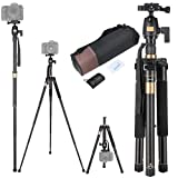 60 Inch Compact Camera Travel Tripod 360 Degree Swivel Ball Head 1/4 Quick Release Plate Carry Bag 5 Section Height Adju (Color: Black, Tamaño: 61