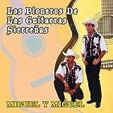 echange, troc Miguel Y Miguel - Pioneros De Las Guitarritas