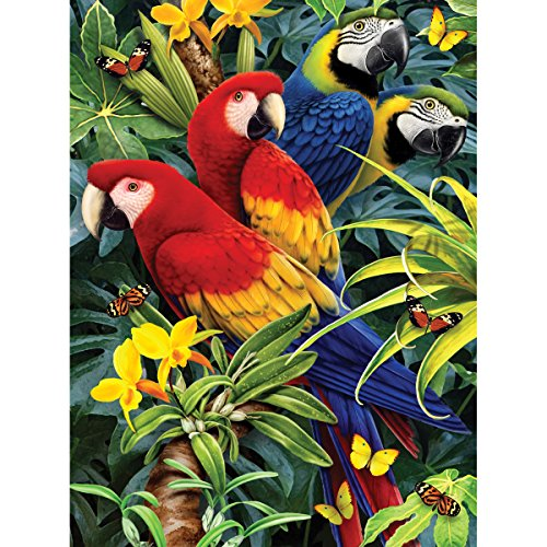 Royal Brush 8.75 by 11.75-Inch Junior Paint by Number Kit, Small, Majestic Macaws