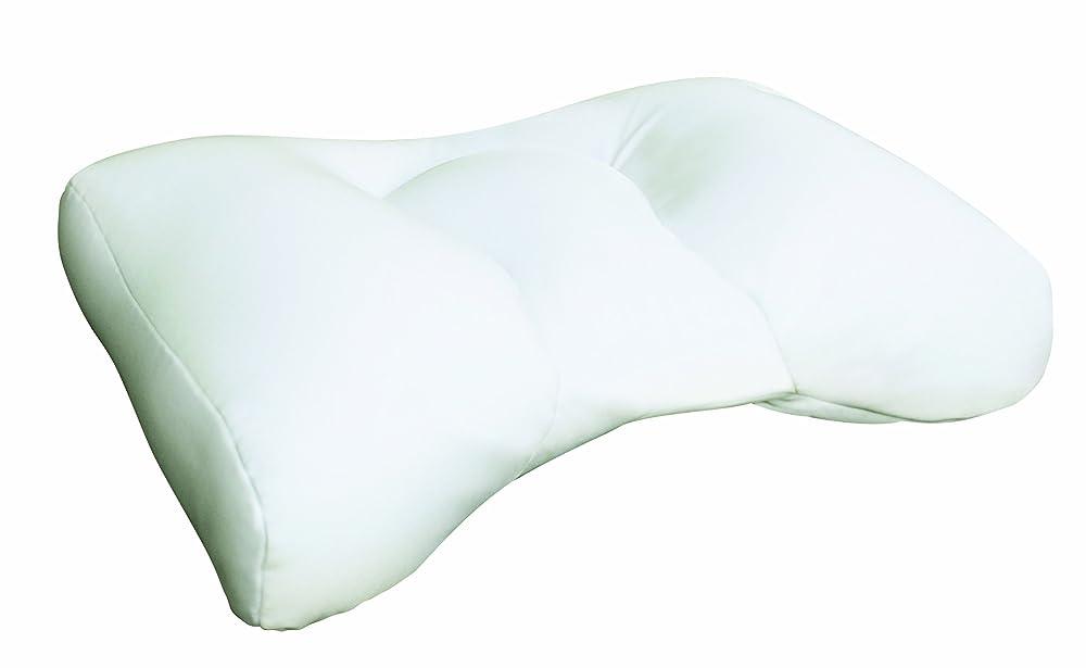 photos natures pillows sobakawa buckwheat pillow contemporary