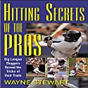 Hitting Secrets of the Pros Audiobook by Wayne Stewart Narrated by Michael Kramer