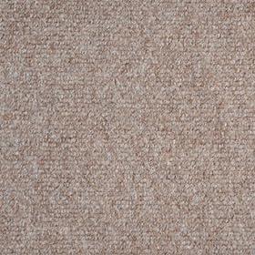 Amazon.com: Indoor/Outdoor Carpet/Rug - Beige - 6' x 10 ...