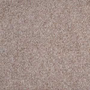 Amazon.com: Indoor/Outdoor Carpet/Rug - Beige - 6' x 10 ...