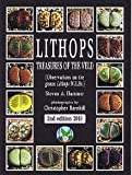 Lithops - Treasures of the Veld