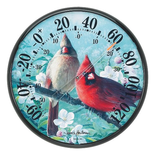 Chaney Instruments Acu-Rite 01597 12.5-inch Cardinals Thermometer