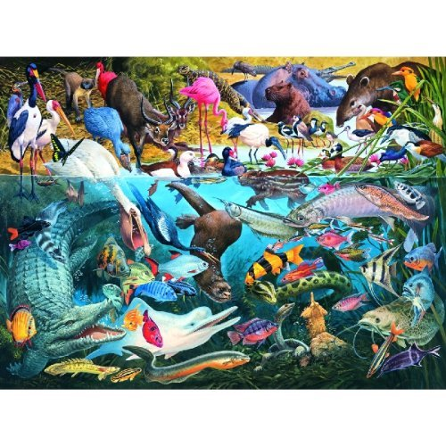 Cheap SunsOut Tropical Waters 1000pc Jigsaw Puzzle by James Hamilton Grovely (B0033S7KTA)
