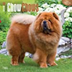 Chow Chows 2016 Square 12x12 Wall Cal...