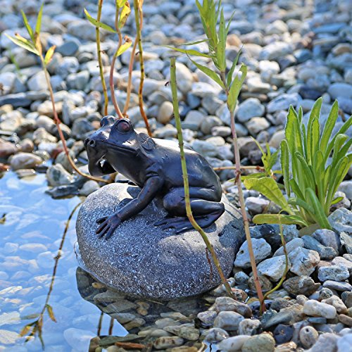 wasserspeier figur frosch auf stein f r gartenteich brunnenbecken dekofigur wasserspiel teich. Black Bedroom Furniture Sets. Home Design Ideas