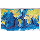 "The World Ocean Floor - MAP measures 24"" high x 42"" wide (610mm high x 1067mm wide)"