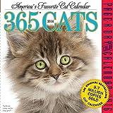 365 Cats 2016 Calendar