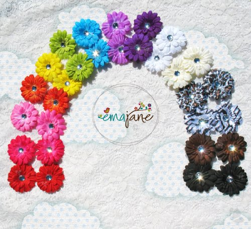 28 Assorted 'Ema Jane' Boutique Quality Small Gerber Daisy (Double Matching Colors, 2 Sets of 14) Flower Hair Clip Bows - Infants, Baby, Toddlers, Youth, Girls - Hair Clip Attaches to Headbands, Beanies, or Hair
