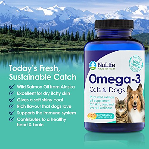 1 best omega 3 for dogs and cats wild alaskan salmon for Fish oil capsules for dogs
