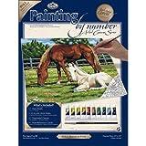 Royal & Langnickel PCL2 - Malen nach Zahlen K�nstler Leinwand Serie - Pferde auf der Weide Large