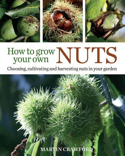 how-to-grow-your-own-nuts-choosing-cultivating-and-harvesting-nuts-in-your-garden