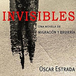 Invisibles (Volume 1) Audiobook