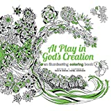 img - for At Play in God's Creation: An Illuminating Coloring Book book / textbook / text book