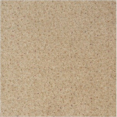 Legato Embrace Carpet Tile in Tender Beige