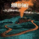 Blood Red Shoes [VINYL]