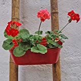 Metal Railing Basket - Red