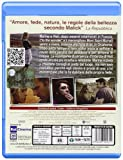 Image de To the wonder [Blu-ray] [Import italien]