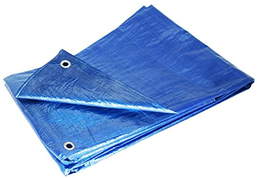 Grizzly Tarps GTRP810 8 x 10-Feet Blue Multi-Purpose 6-Mil Waterproof Poly