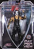 WWE Pay Perview #20 Jeff Hardy
