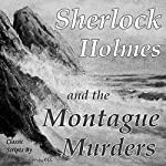 Sherlock Holmes and the Montague Murders: The Holmes and Watson Series, Book 2 | Ian Shimwell