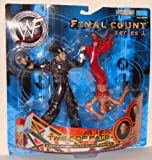 WWE WWF Final Count Series 1 Twist of Fate Matt Hardy & Lita Action Figure Two Pack