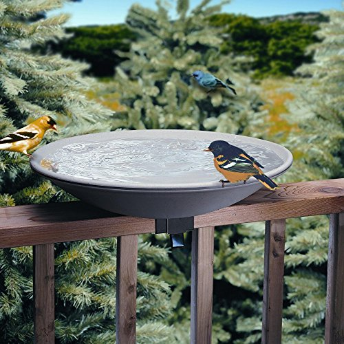 Allied Precision 20 in. EZ Deck Tilt and Clean Non-Heated Bird Bath