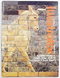 img - for Biblical Illustrator, Volume 14 Number 4, Summer 1988 book / textbook / text book