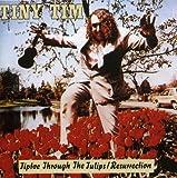 echange, troc Tiny Tim - Tiptoe Through the Tulips: Resurrection