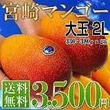 送料無料 宮崎産 秀品 完熟マンゴー 大玉 2L×2玉 1玉330g~380g ランキングお取り寄せ