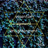 essential element enlightenment