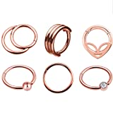 TOPBRIGHT 6pcs Hinged Segment Ring 16G Nose Septum Ring Hoop Mixed Styles 316L Stainless Steel Septum Clicker for Body Piercing (Rose Gold) (Color: Rose Gold)