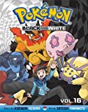 Pokémon Black and White, Vol. 16 (Pokemon)