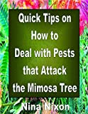 Quick Tips on How to Deal with Pests that Attack the Mimosa Tree