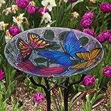 Ns Glass Birdbath