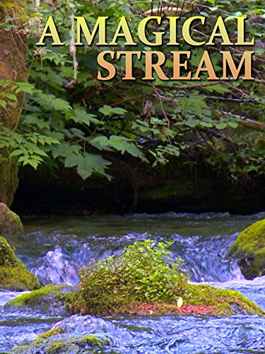 A Magical Stream