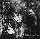 DAWN OF THE DEAD ~屍の夜明け~