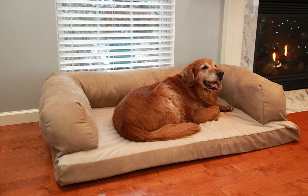 Top 10 best sofa bed for dogs dog sofa beds review for X large dog sofa bed