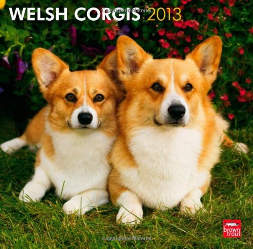 Welsh Corgis 2013 Square 12X12 Wall Calendar