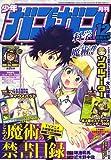 月刊少年ガンガン2008年12月号『鋼の錬金術師』第89話「戦士の帰還」