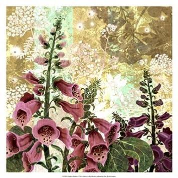 R Collier Artist R  Collier-Morales - Foxglove