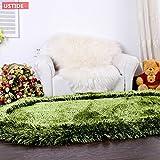Ustide Super Soft Area Carpet Collection Olive Green Color Shaggy Bedrom Rugs Floor Runner Rugs Decorator Carpets for Living Room Foyer