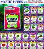 Mystic Herbs 21 Varieties NON GMO Culinary and Medicinal Herb Seeds Gift Pack